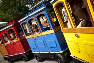 Веселые вагоны: желтый, синий и красный!